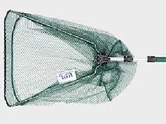 ساچوک پرورش ماهی