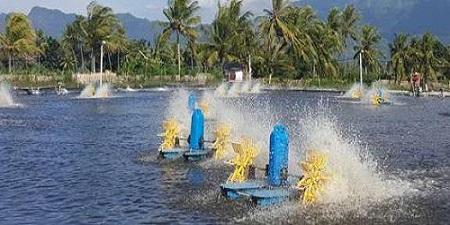 قیمت دستگاه هوادهی پرورش ماهی