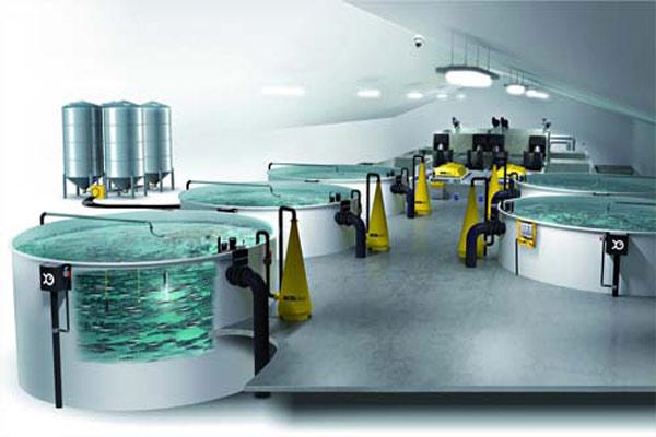 دستگاه غذادهی اتوماتیک پرورش ماهی